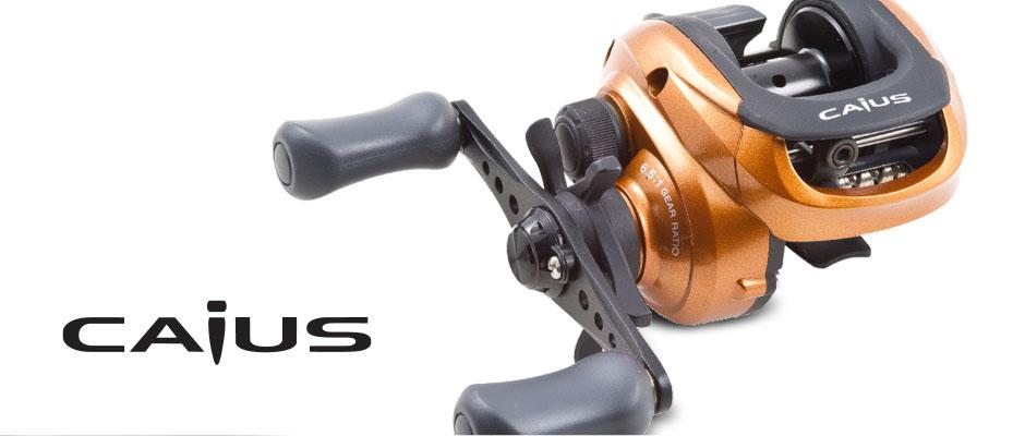 bait casting | Shimano Caius 200