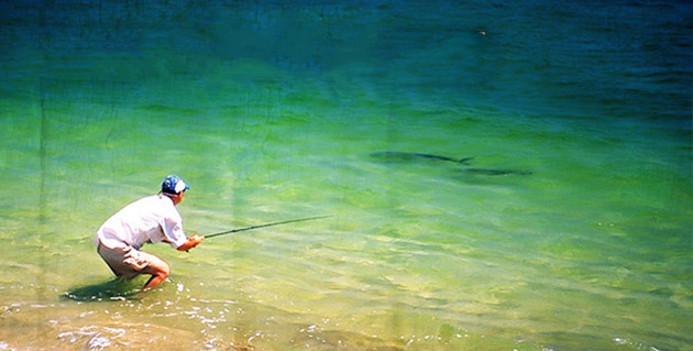 mexico fishing