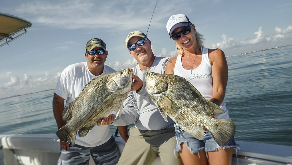 florida tripletail technique