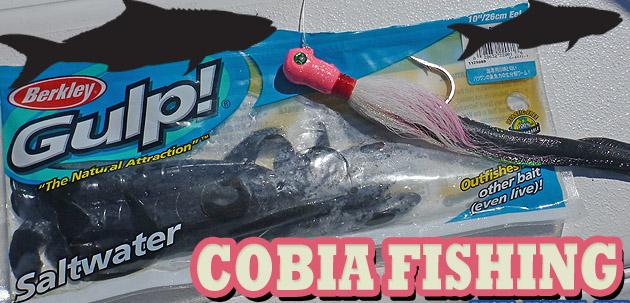 C18497_R_cobiafishinga.jpg