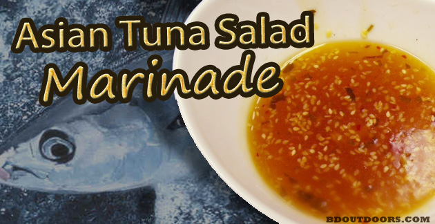 Asian Tuna Salad Marinade Recipe