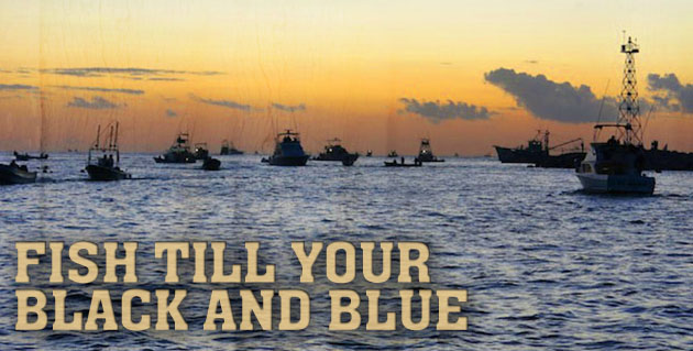 Bisbee's Black & Blue Marlin Tournament