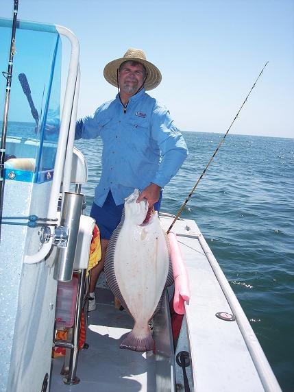 California halibut report for California halibut fishing