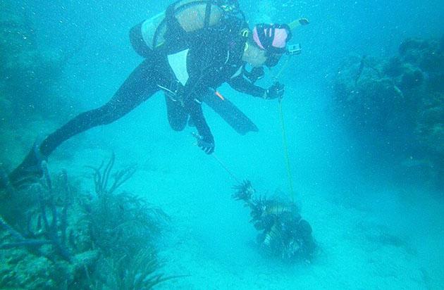 Rachel Bowman scuba diving