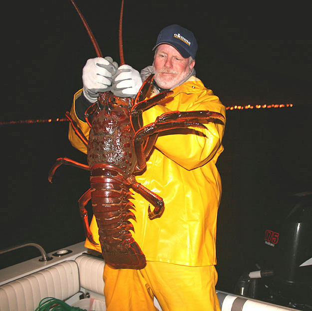 12_pound lobster