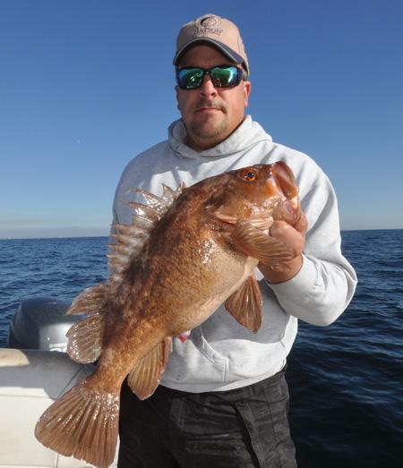 rockfish time