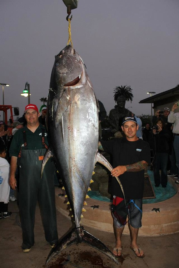The Biggest Spring 2016 Fashion Trends On Pinterest: Biggest Yellowfin Tuna Ever Caught