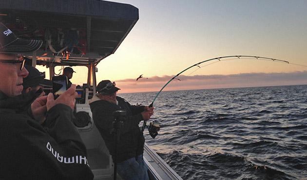 PEI Tuna Charters