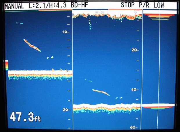 Learn to use a fish finder sounder tips captain mark wisch for How to read fish finder