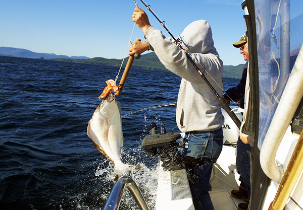 Alaska Halibut Catch Share Bad Idea