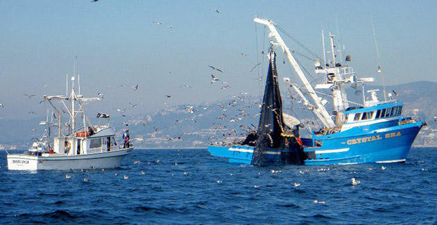 10 worse commercial fishing countries for What is commercial fishing