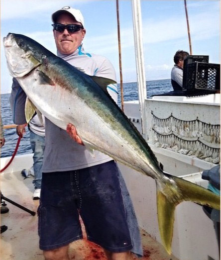 Big Yellowtail Highlight