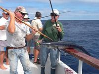 Yellowfin Tuna Fishing