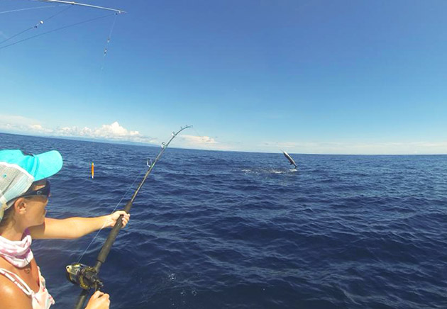 Maureen Mascaro sailfish