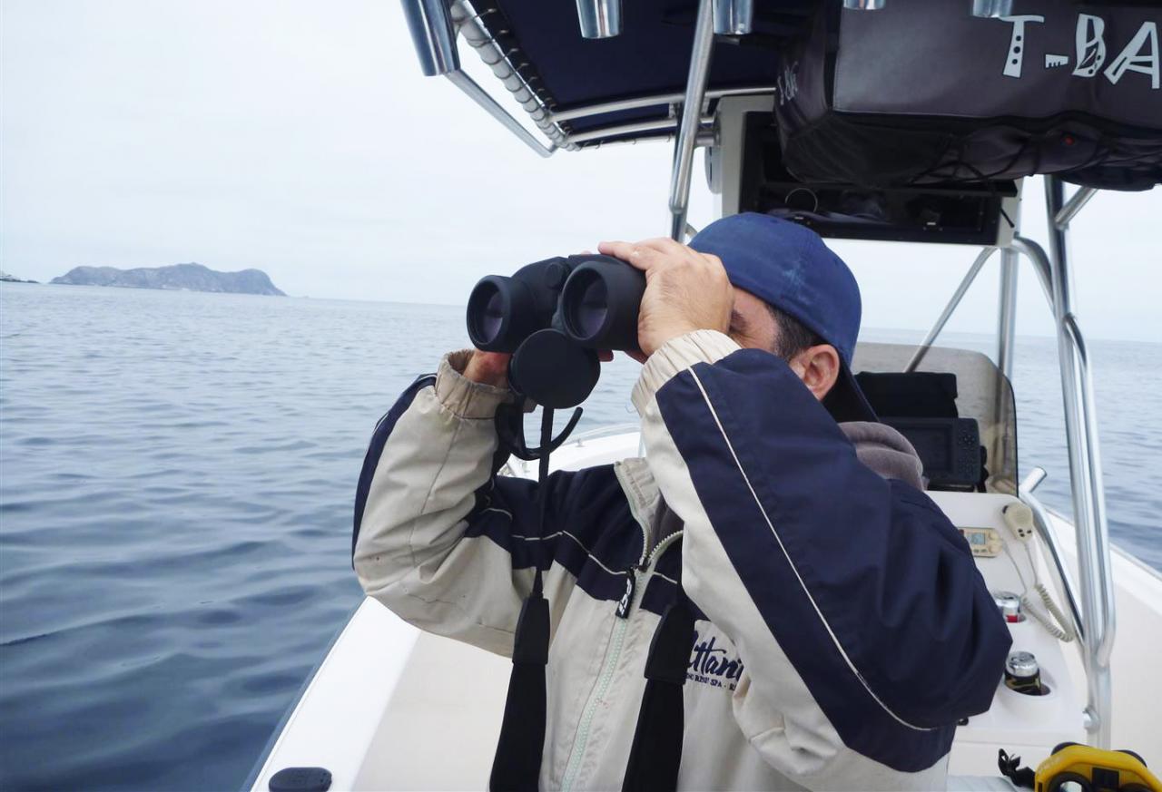 Minox Binocular Review Marine