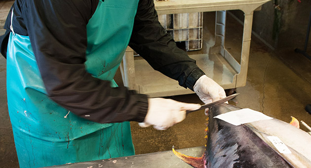 Sample tuna cutting