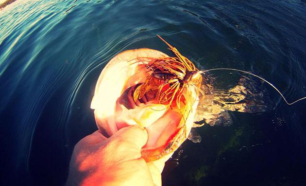 Early Season Jig Fishing