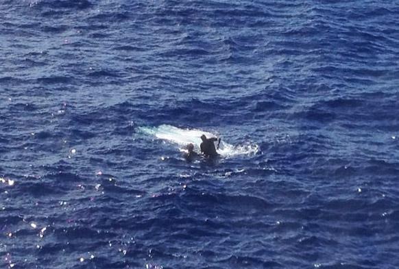 Tuna Capsizes Boat Hawaii