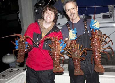 Hoop netting california lobster for Long beach sport fishing
