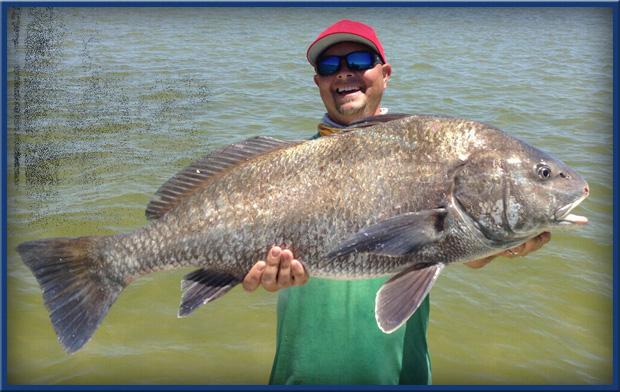 black drum fishing Florida