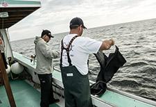 kite fishing for tuna