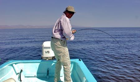 Fishing Tuna Dorado