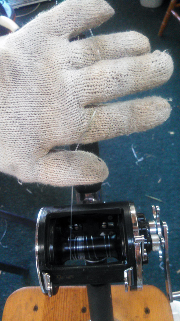 Conventional Fishing Reels