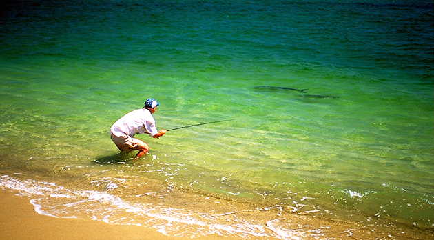 Saltwater fly fishing the baja way for Salt water fly fishing