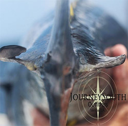 Journey South Outfitters