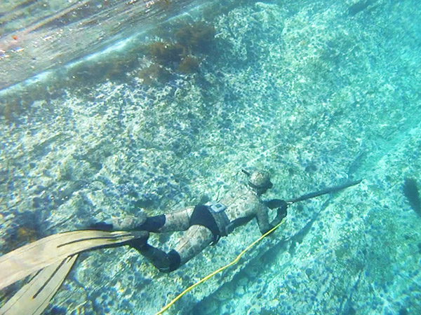 Abbey Wagley spearfishing