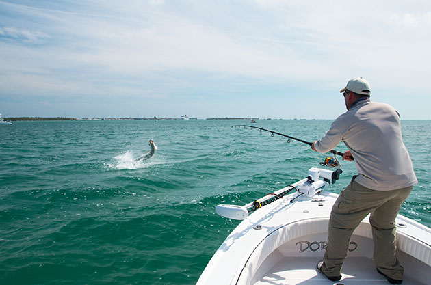 Tarpon Season Tactics