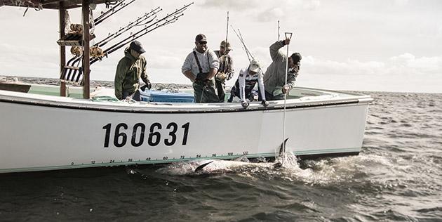 Capt. Tony's Tuna fishing charters