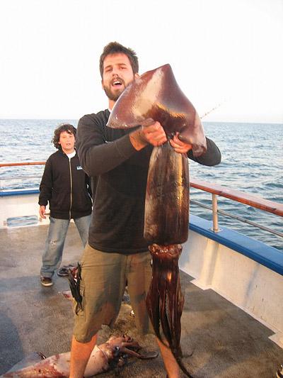 Humboldt squid bite is on for Newport landing fish report