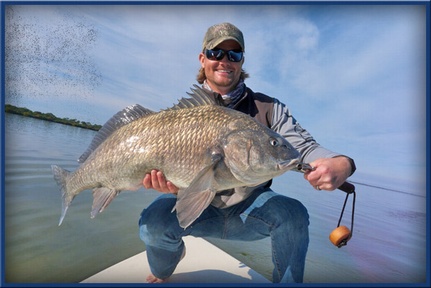 black drum fishing Florida
