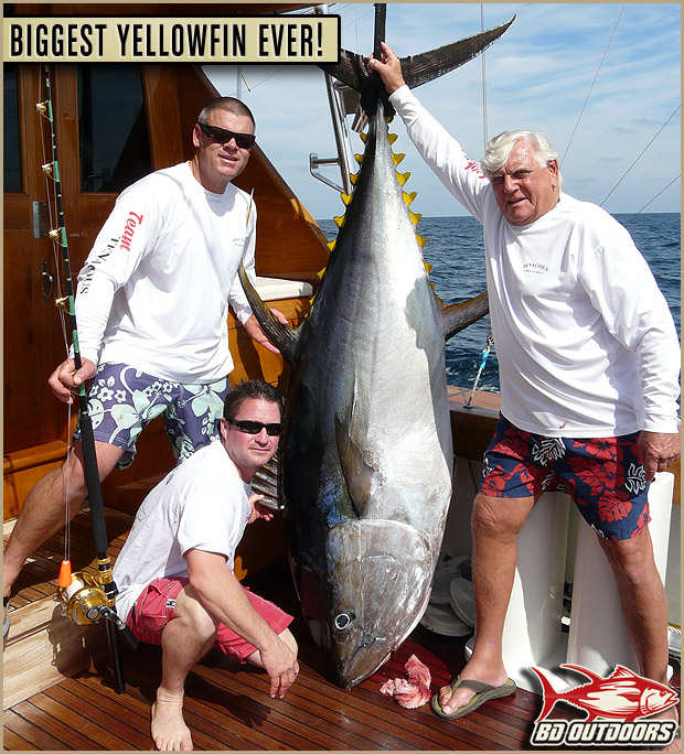 Biggest Yellowfin Ever Possible World Record Yellowfin Tuna