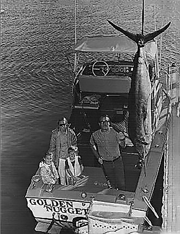 marlin history