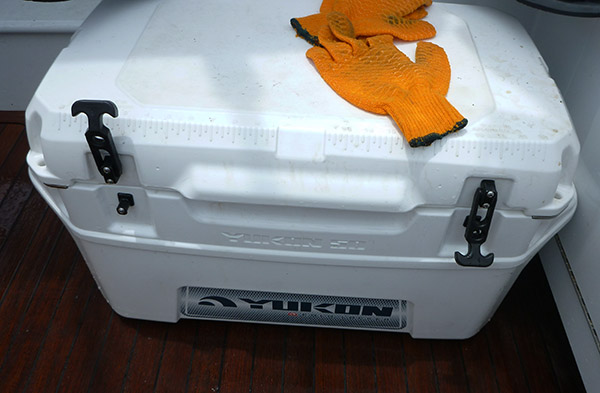 fishing cooler