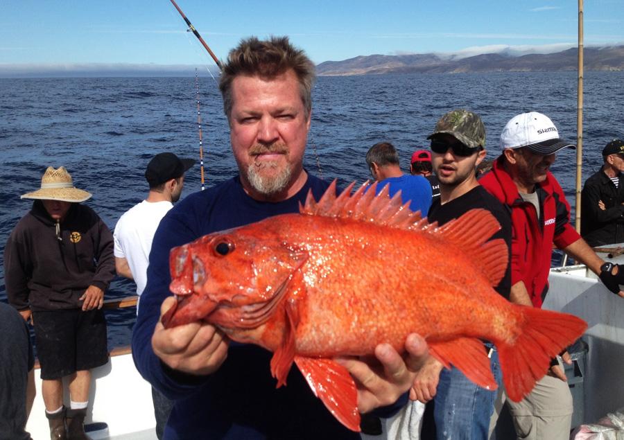 rockfish tips - Rockfish Fishing Techniques