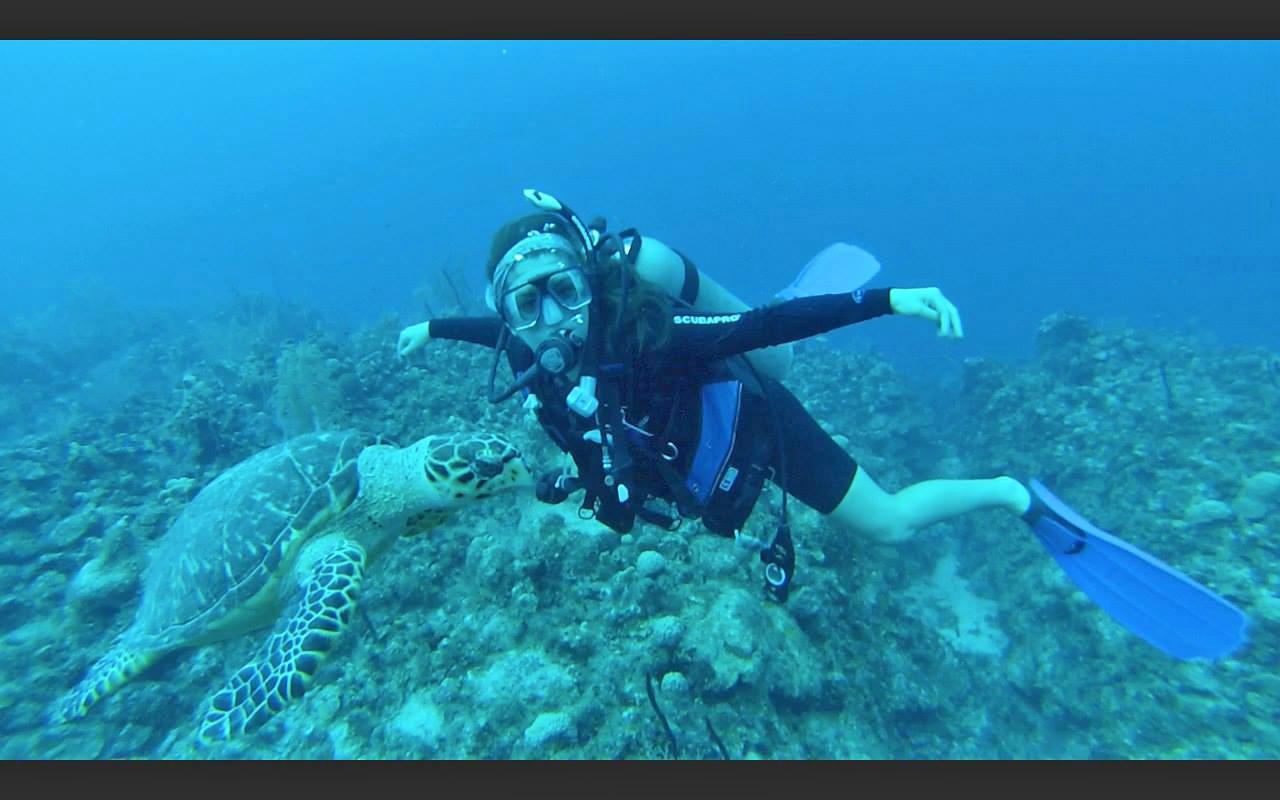 Heather Harkavy hobbies diving