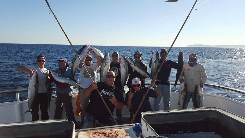Enterprise fishing