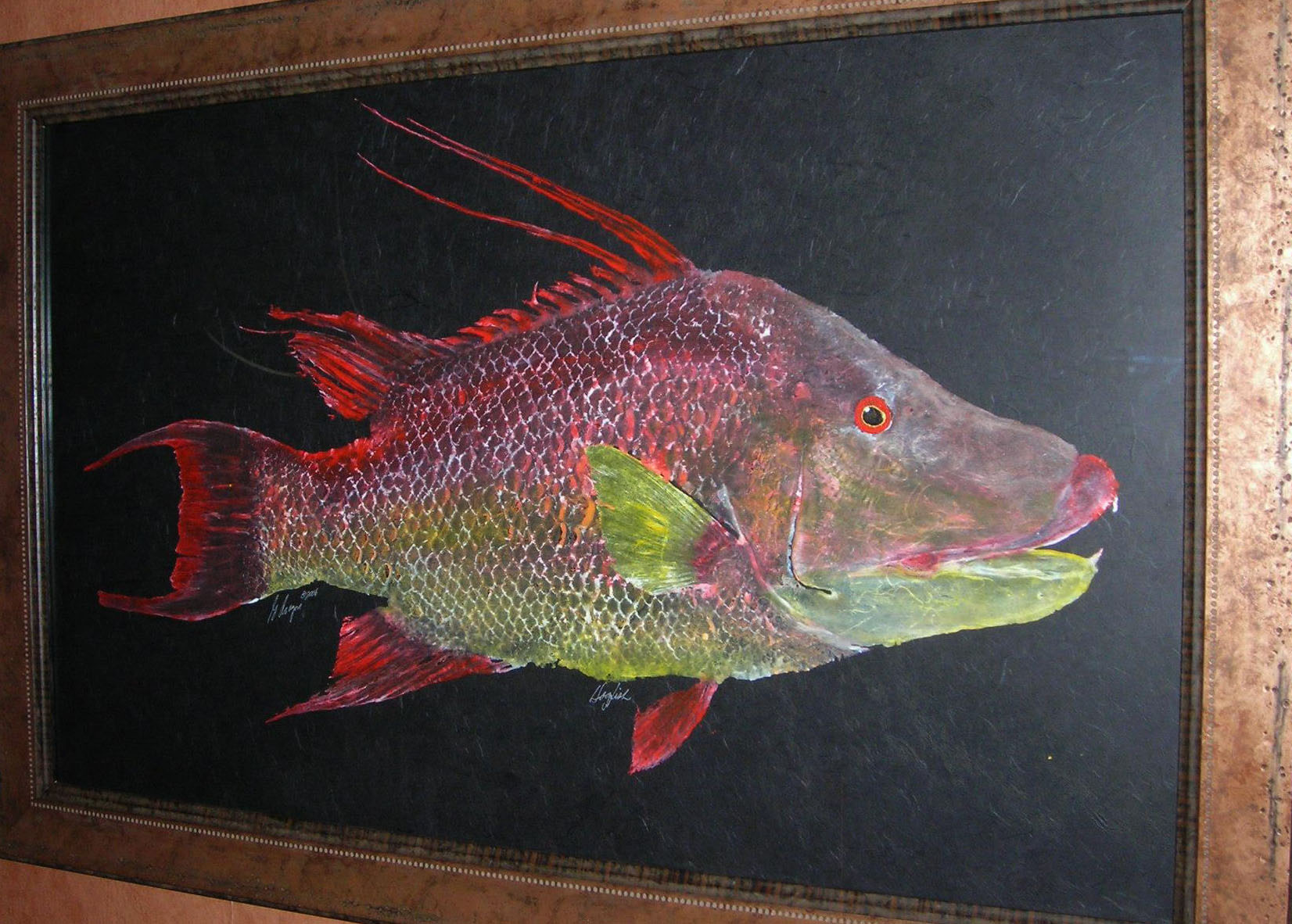 hogfish art