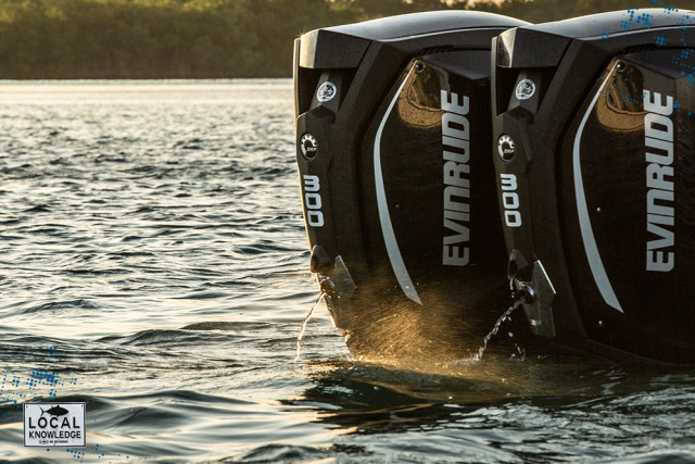 evinrude engines
