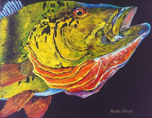 paintings fish