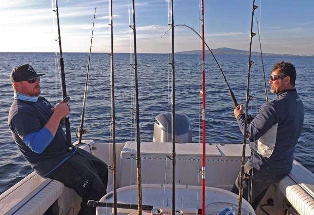 fishing seabass