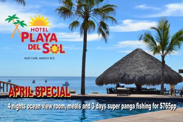 Van Wormer Resorts Playa Del Sol