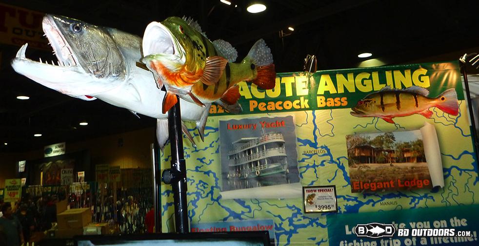 acute fishing - Fred Hall Virtual Tour