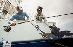 flyfishing billfish