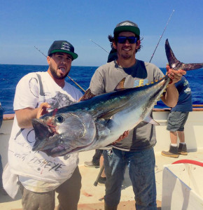 tuna reports - bluefin getting bigger