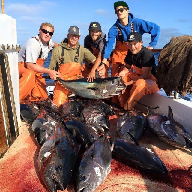 bluefin reports - Weekend Recap Bluefin Fever