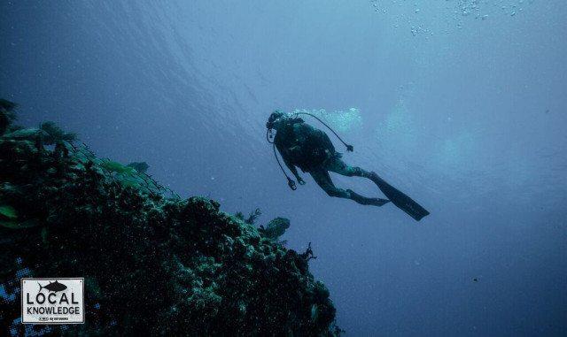 diving keys